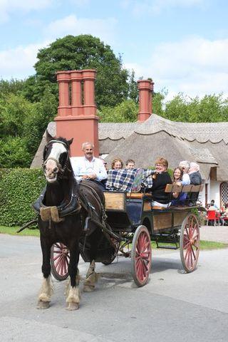 small-Killarney Jaunting Cars